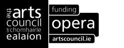 Arts Council of Ireland